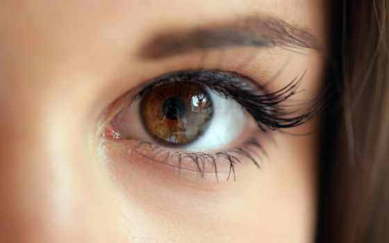 jci, глаз, logo, pupilas, daraga, las, фото, albay, patna, best, wizard,