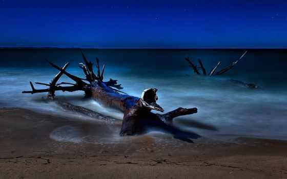 starry, ночь, небо, desktop, stars, free, пляж,