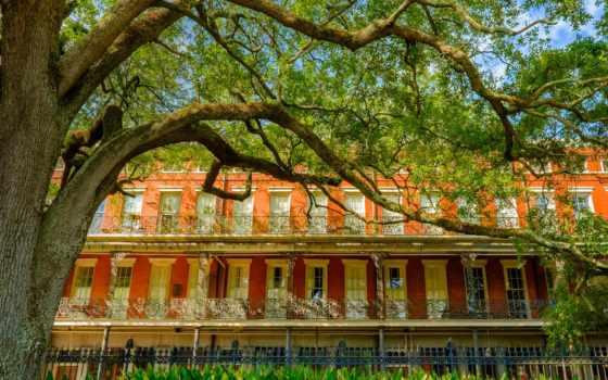 new, orleans, плантация, laura, тур, путешествия, дуб, plantations,