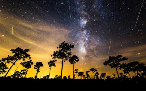 фотографий, box, первые, breathtaking, метеор, захватывающие, потока, персеид,