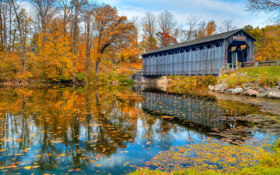 осень, качестве, река, высоком, лес, нояб, природа, хорошем, базе,