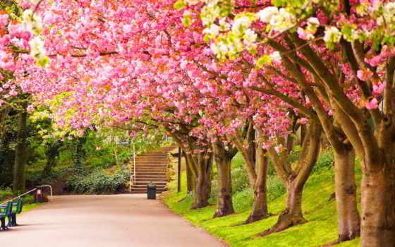 весна, colours, биг, рисунок, радио, весну,