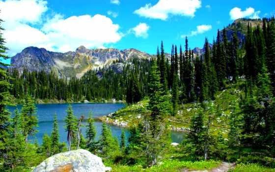 природа, landscape, usa