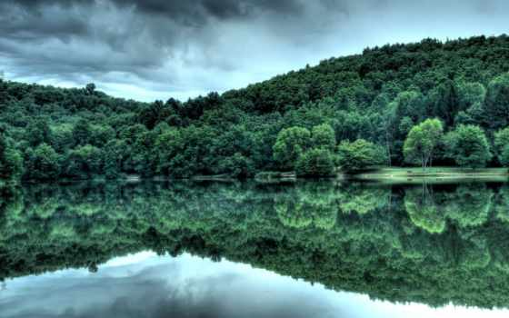 лес, отражение, water, озеро, река, trees, всех, есть, тег, которых,