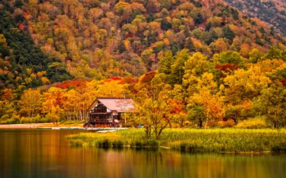 reki, дома, осень, house, города, берегу, lodge, лес, картинка, химках,
