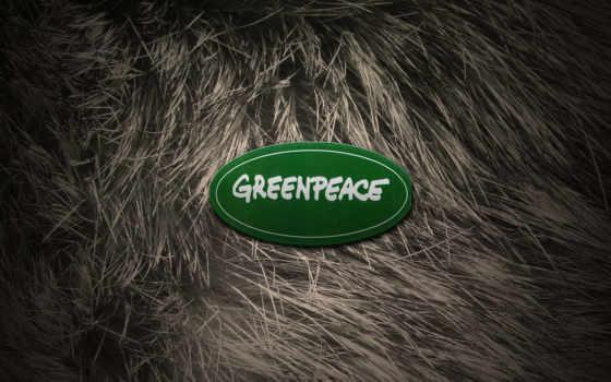 greenpeace, logo, девушка, защита, zhivotnye, шерсть, browse, мех, год, new,