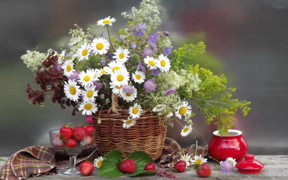 cvety, ромашки, букет,