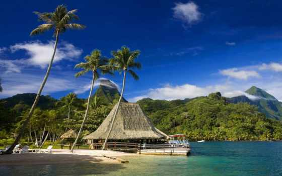tahiti, ecran, fonds, les, polynésie, tous, tablettes,