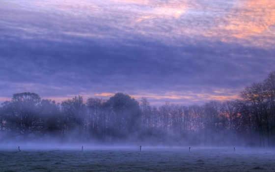 туман, full, красивые