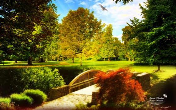 parede, jardim, papel, encantado, mesmo, agora, abaixe, filesize, resolution,