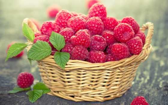 summer, еда, svoya, малина, листочек,