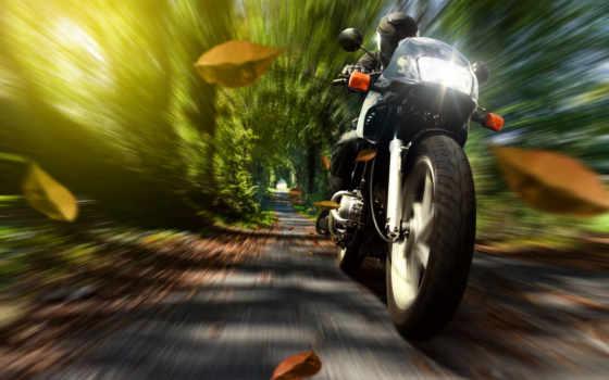 скорость, мотоцикл, мотоциклист, шлем, мотоциклы, природа, осень, листва,