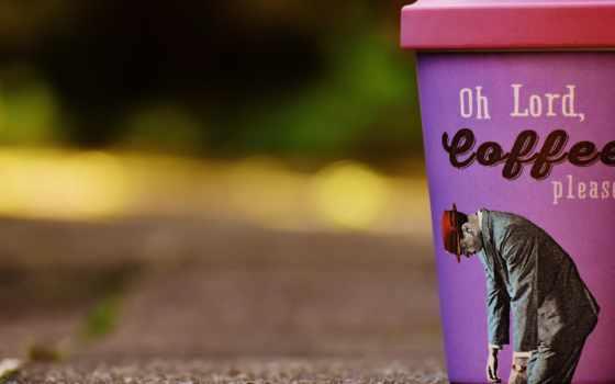 coffee, юмор, cate