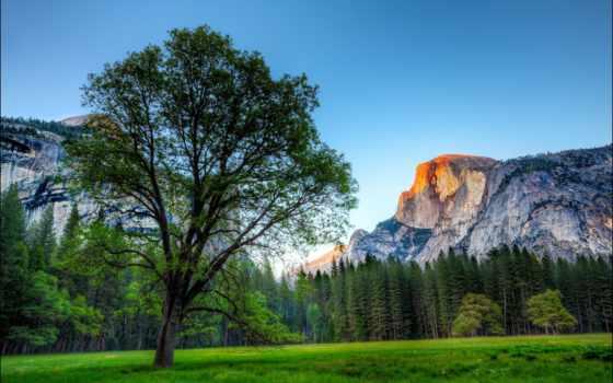 yosemite, national, park, nevada, sierra, горы, фотографий, природа, dome, half,