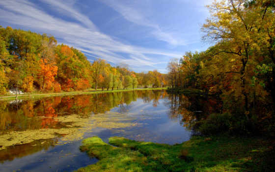 осень, природа, park, пруд, высоком,