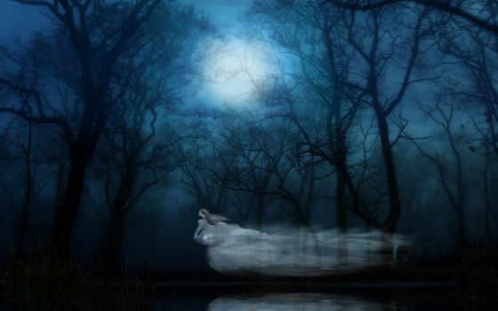 ghost, fantasy, девушка, призраки, лес, фотоарт, могила,