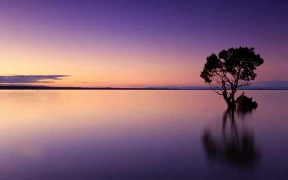 дерево, озеро, небо, discomfort, seek, добавить, roberta, пожаловаться, youtube, сумерки