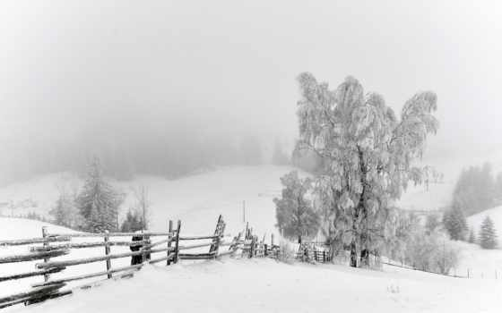 winter, nieve, landscape