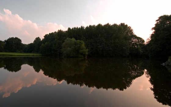 вода, лес Фон № 9161 разрешение 1920x1200