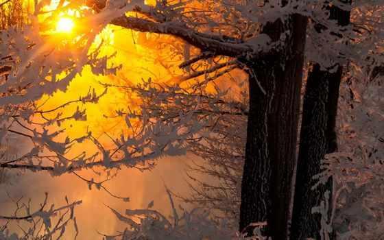 winter, сибири, pinterest, будет, what, forecast, siberian, года, дневник,