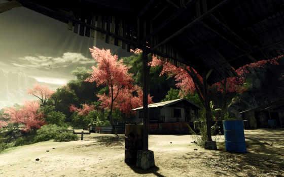 весна, цветущие, природа, trees, сады, rewalls, бочки,