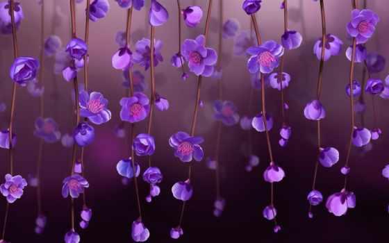 cvety, фиолетовые, тычинки, свет, картинка, весна, стебли,