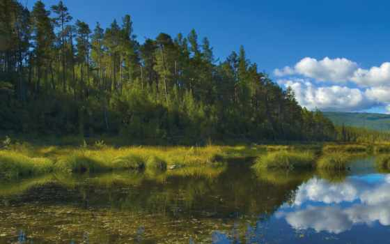 природа, desire, сибири, пейзажи -, яndex, пользователя, коллекция, озеро, bikkla, коллекциях,