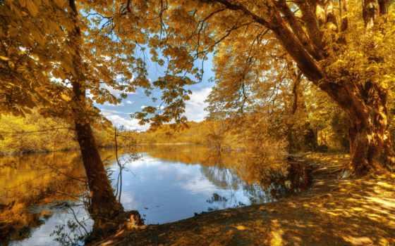 осень, река, trees, природа, листва, лес, рыбалка, красиво, небо, отдых,