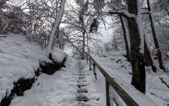 лес, winter, весна, осень, луна, небо, пейзажи -, дек,