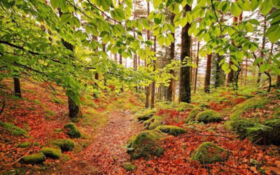 португалия, пейзажи -, destinos
