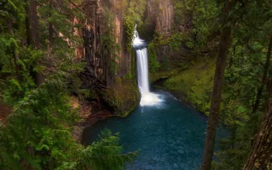 rock, водопад, water, дерево, mossy, зелёный, fore, природа