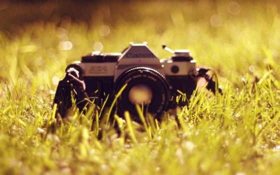 трава, фотоаппарат