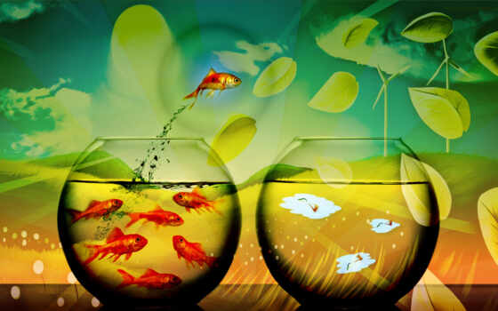 fish, iphone, this, هه, компьютерный, дизайн, water, картинку, like, art, fishes, балла, out, pictures, fishbowl,