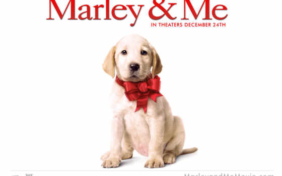 марли, marley, щенок, фильмы,