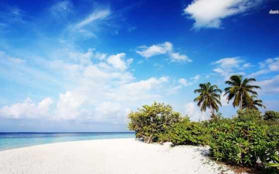 природа, пляж, desktop,
