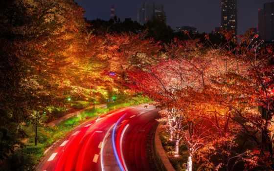 город, фото, осень, tokyo, япония, бесплатные,