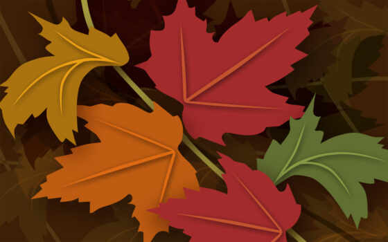 leaf, осень, color
