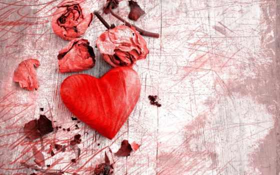 duvar, kağıtları, yaprakları, kalp, görüntüleri, gül, arka, masaüstü,