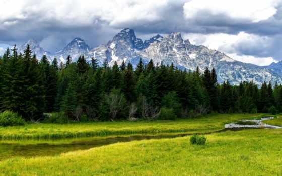 лес, горы, заставки, поляна, trees, лесные, леса,