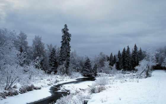 winter, fore, снег, природа, река, дерево, аляска