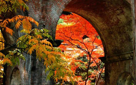 японские, пейзажи -, осень