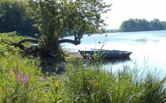 лодка Фон № 89447 разрешение 4608x3456