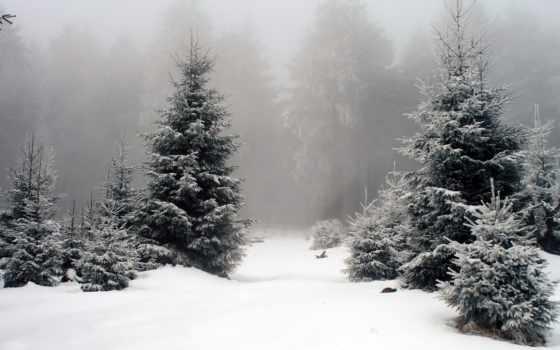 winter, photoshop, фоны, landscape, зимние, фон, объектив, flare, янв,
