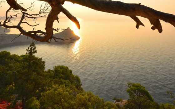 природа, priroda, остров, море, дерево, фото,