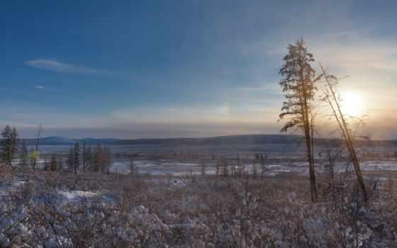 north, extreme, trees, оймякон, снег, oymyakon, пишется, россии, холода, sun, pole,