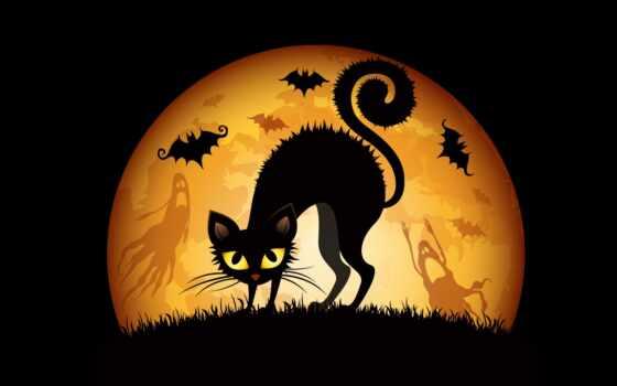 кот, halloween, хэллоуинский, коты, котенок, хэллоуина, black, ужасный, animal