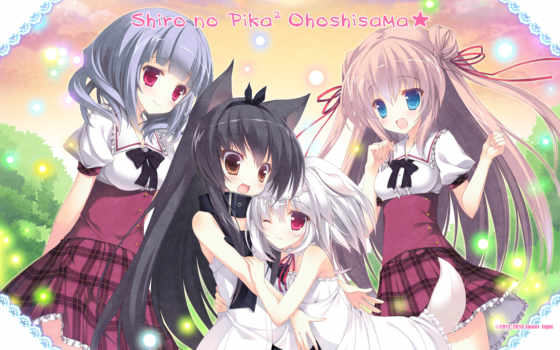 light, sweet, shiro, sama, ohoshi, pikapika, title, installer, patch, www, release, click, tail, ears, doggirl, animal, seifuku, bonus,