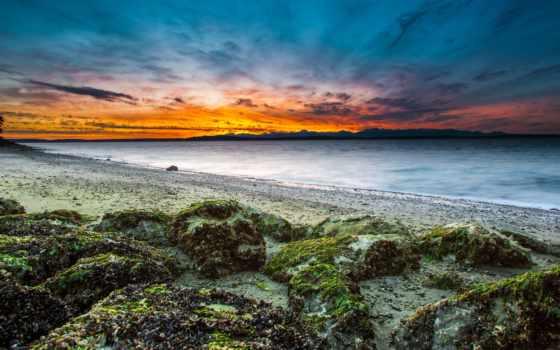 звуки, побережье, приложение