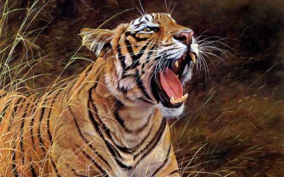 тигр, online, puzzle