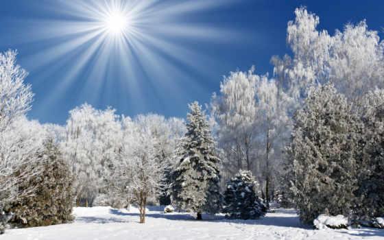 winter, пейзажи, дек
